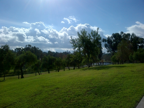 A gorgeous winter (?!) day in Southern California. This was my view on my 50-minute bike ride through the park on Sunday.