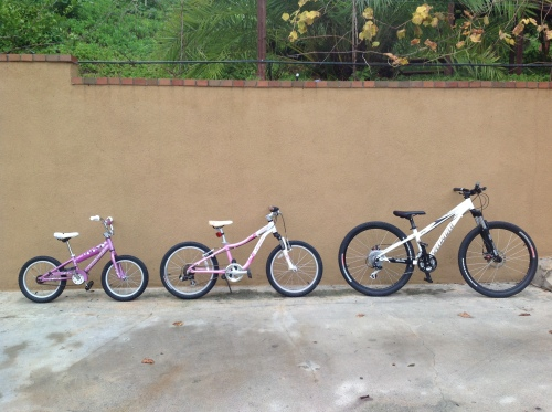 Three Specialized Bikes