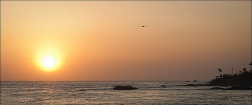 Sunset at Main Beach Park in Laguna Beach. Photo by Eric Bennett.