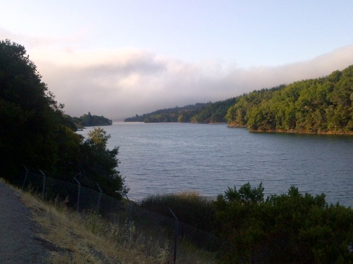 This view was my reward for running 20 miles along the trail by Crystal Springs Reservoir in the northern Santa Cruz Mountains in San Mateo County, California