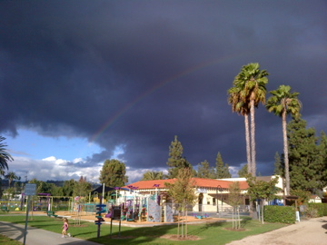 rainbow over the palms