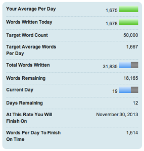 National Novel Writing Month count