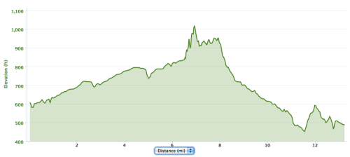 The course elevation as recorded by my Garmin. While it might not be perfectly accurate, I'd say it's about right!