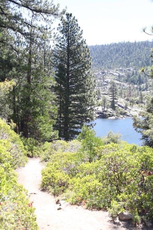 The dirt trail bordering Pinecrest Lake