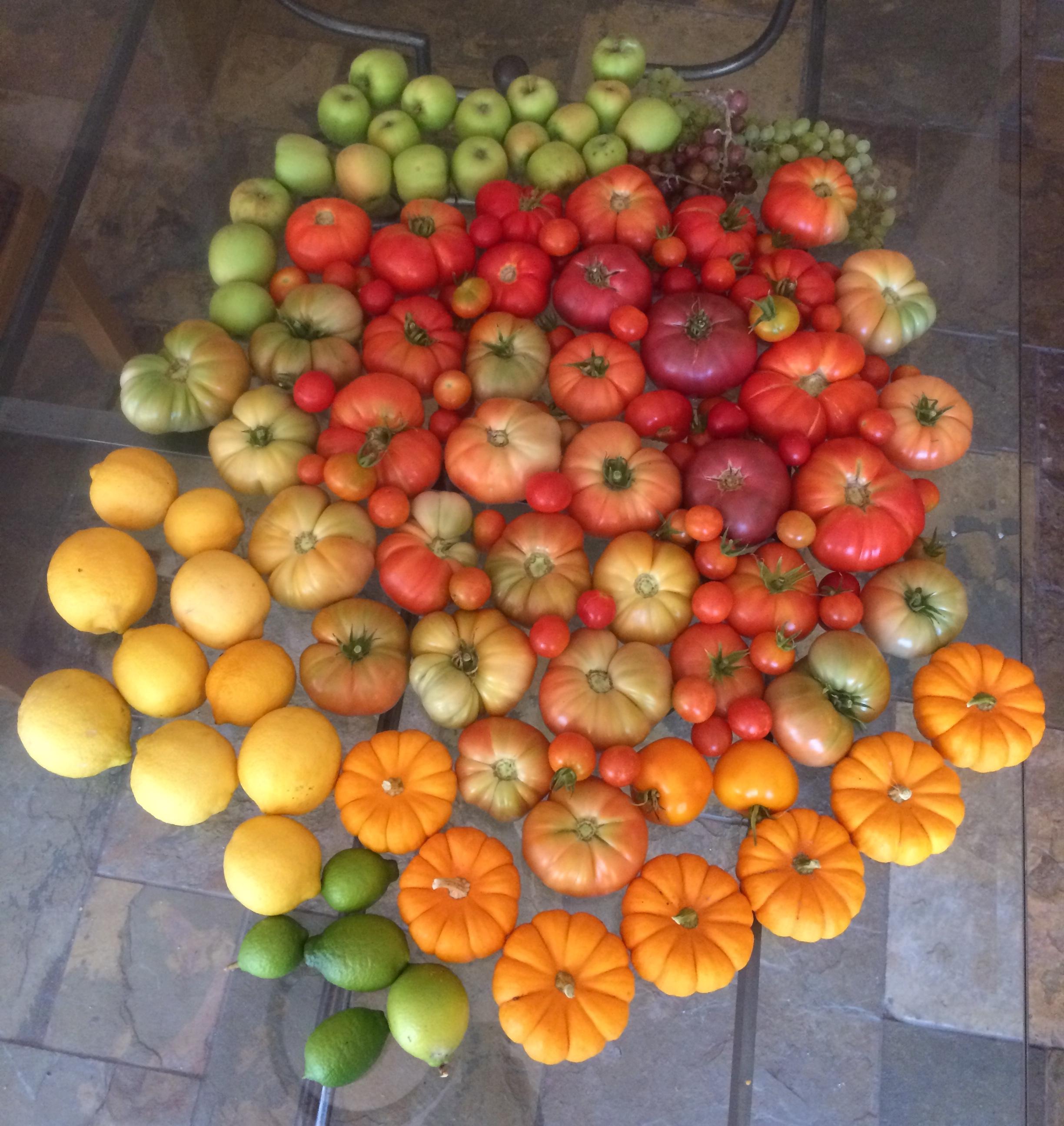 Food art harvest