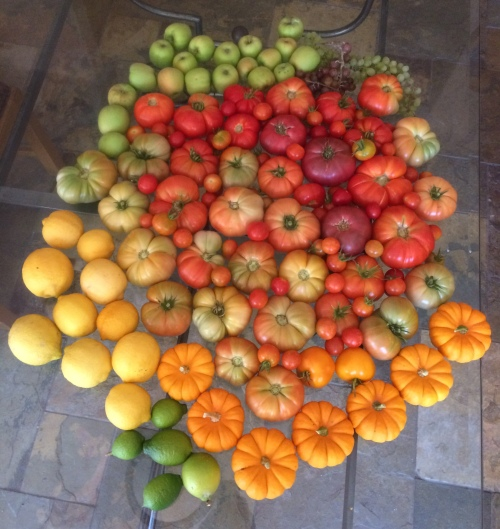 Food art harvest